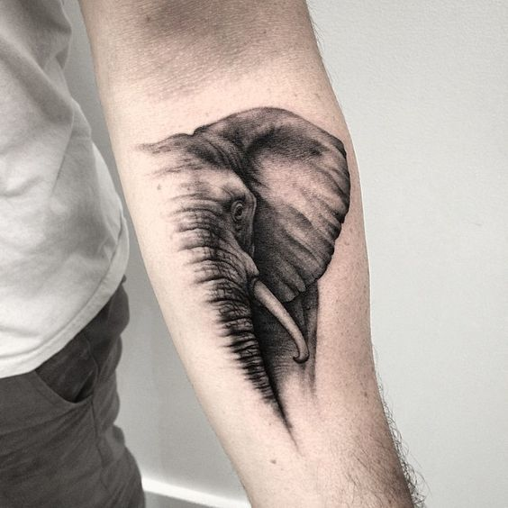 Image of: Tatuaje Half Face Fading Tattoo On The Wrist Pacho Tattoo 60 Best Elephant Tattoos Meanings Ideas And Designs 2019